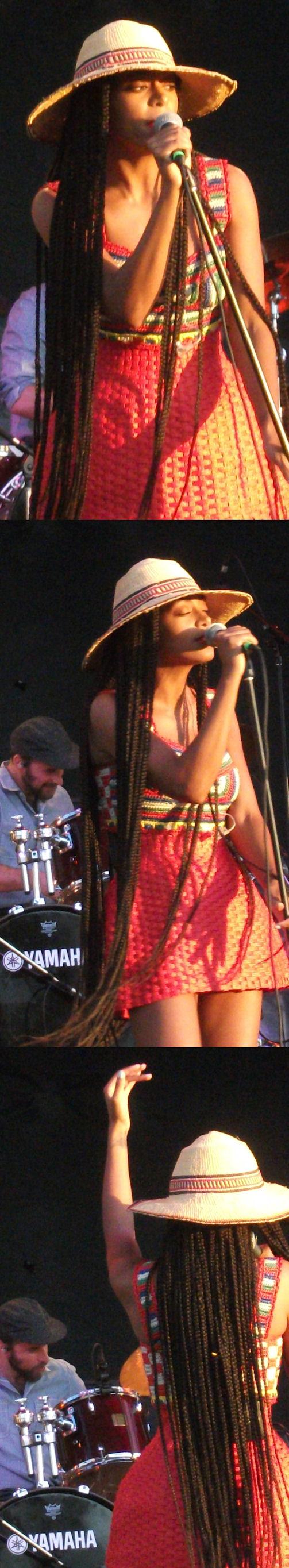 Solange Ottawa Bluesfest 2013 VariousArtists collage 2